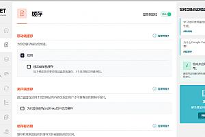 WP Rocket 火箭加速器最新中文汉化破解版WP Rocket v3.8.8