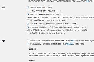 火箭加速缓存插件 WP Rocket v3.8.1 最新完美中文汉化破解版