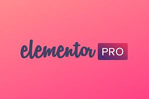 WordPress插件更新至最新版Elementor Pro v3.0.4中文汉化破解版(全网首发 持续更新)