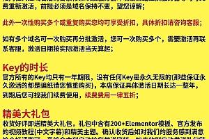 Elementor Pro WordPress可视化编辑器 中文汉化 带Key激活 在线更新